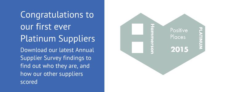 Supplier Report 2015