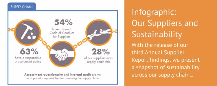 Supplier Infographic 2015